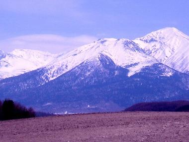 富良野 麓郷